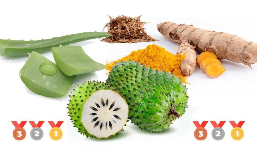 Top 6 productos naturales contra el cáncer